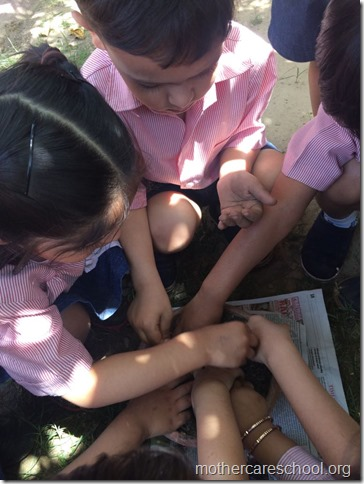 Earth Day Nursery kids learning to sow (3)