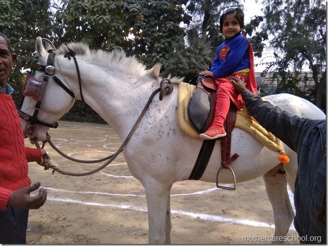 horse riding (3)