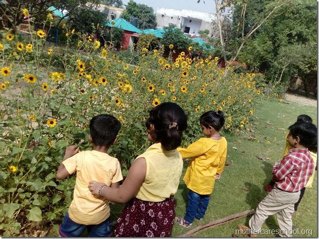 Inviting inspiring sunflowers too