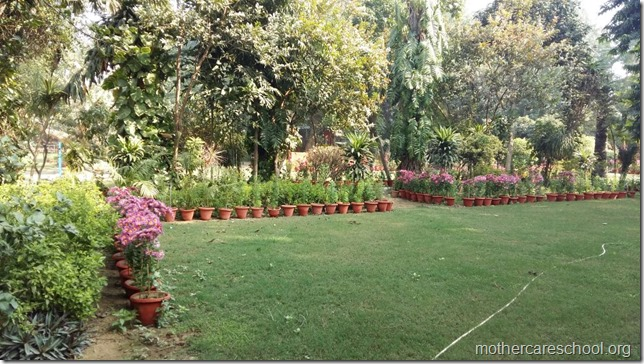 Learning in the lap of Nature. The Gardens at Mothercare School this Winter January 2018 (1)