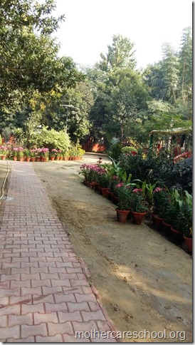 Learning in the lap of Nature. The Gardens at Mothercare School this Winter January 2018 (4)