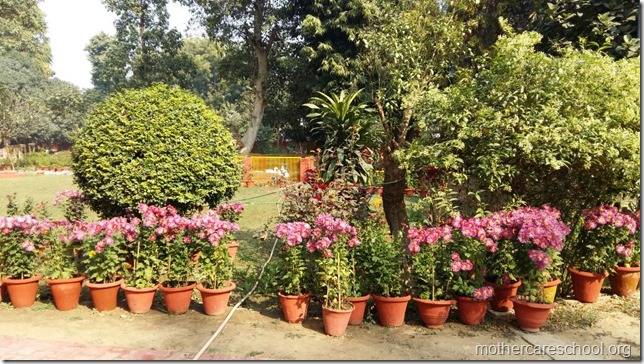 Learning in the lap of Nature. The Gardens at Mothercare School this Winter January 2018 (5)