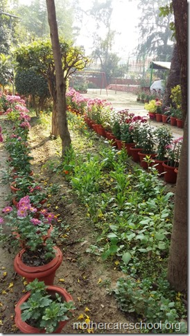 Learning in the lap of Nature. The Gardens at Mothercare School this Winter January 2018 (7)