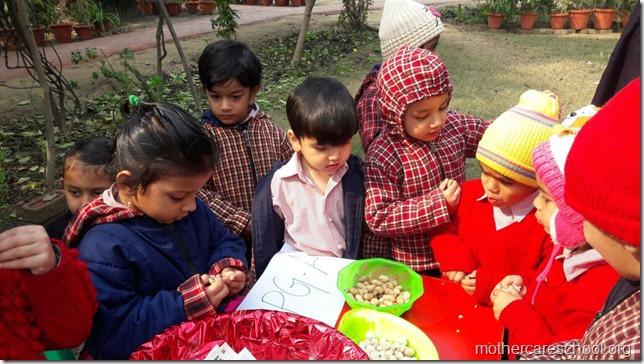 LOHRI and Makar Sankranti celebration in school with a bonfire (2)