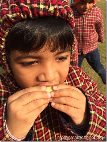 LOHRI and Makar Sankranti celebration in school with a bonfire (5)