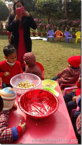 LOHRI and Makar Sankranti celebration in school with a bonfire (8)