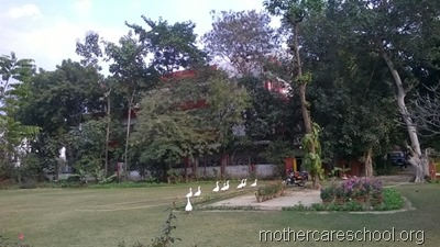 mothercare school,lucknow, garden (11)