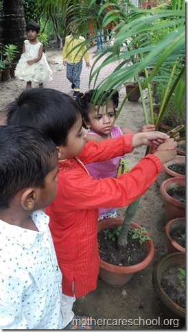 Playgroup children  learning about gratitude to those who nurture and care for us like the teachers, ayahs, van bhayiyas, trees and plants and Moolchand mali bhaiya by tying rakhis (4)